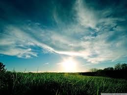 sunny_day
